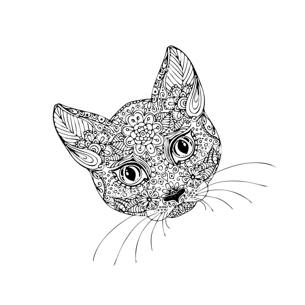 Kočičí mandala kavárna kočičí
